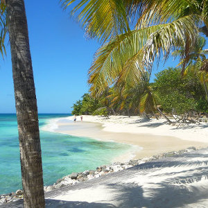 Tropical paradise beach with straw huts on Grenadine Island