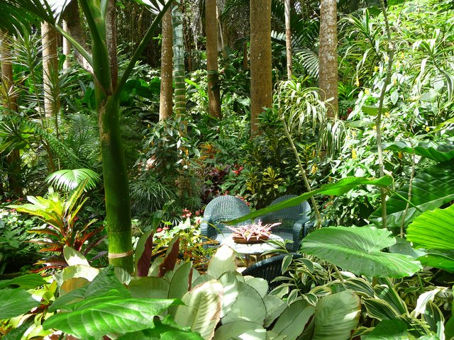 Tropical landscape and flower garden locations in the