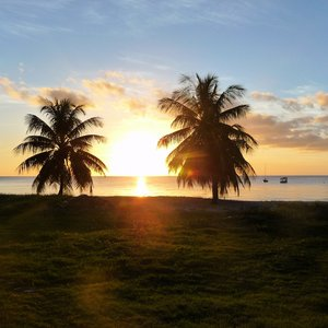 Caribbean sunset location on beach with palm trees