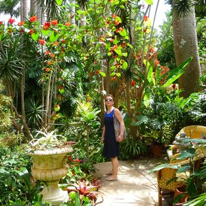 Tropical flower garden filming location Barbados