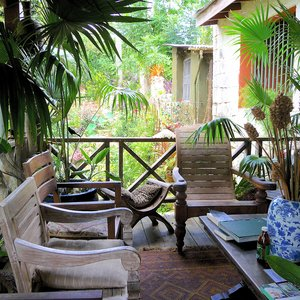 Lush tropical flower garden veranda