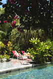 Lush Caribbean Jungle Swimming Pool Location Maruba Resort - Photos: Reinhard Henning